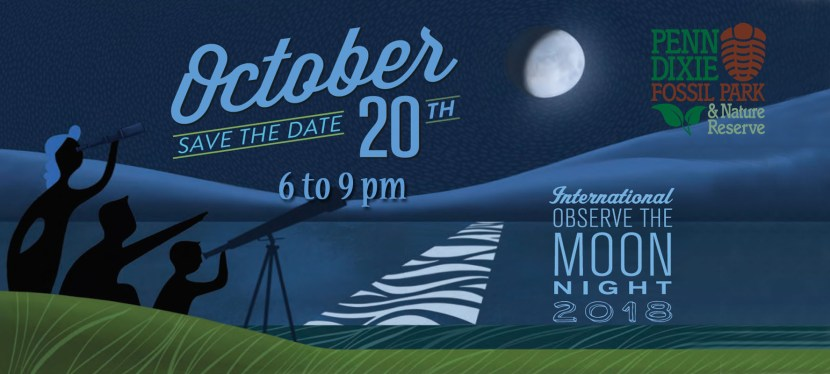 Observe The Moon Night