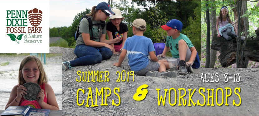 Camps & Workshops