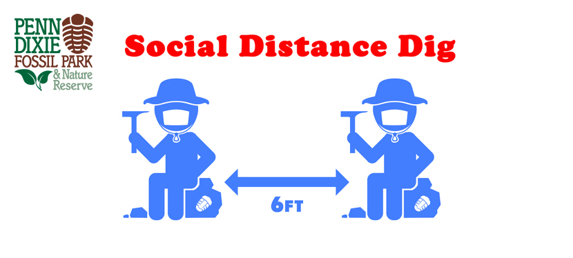 Social Distance Dig 2021