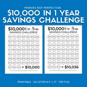 Save 10,000 Dollars In One Year | Money Saving Challenge 10K | 10,000 Dollar Savings Challenge Tracker Printable 1