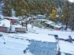 Snow covered village of Chopta in Uttrakhand