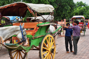 Visiting Taj Mahal in Agra, Places to see in India. Take Horse rides in Agra