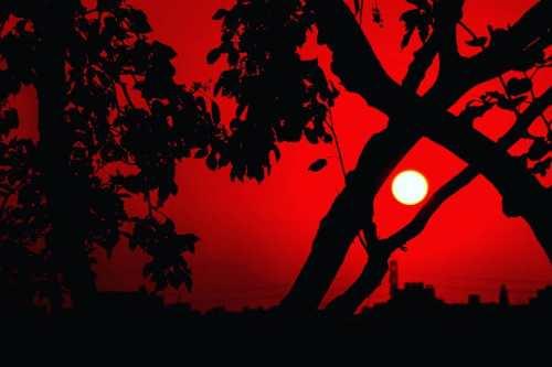 Sunset at Agara Lake in Bangalore captured by Ajita Mahajan aka Penning Silly Thoughts