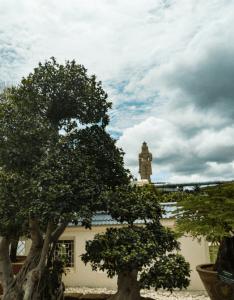 Temple and Bonsai Garden
