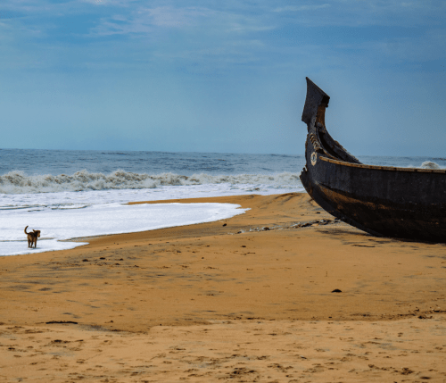 Alleppey beach on a sunny morning