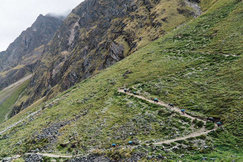 The trail to Salkantay Pass