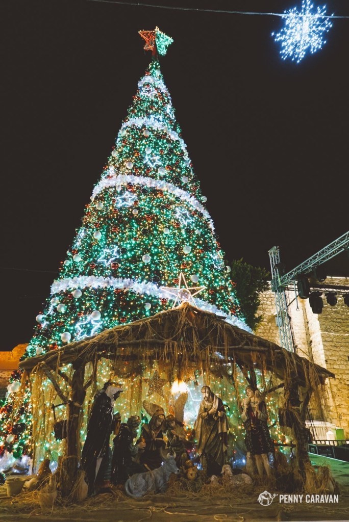 The giant tree and nativity in Manger Square.