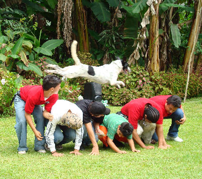 These Panamanian young men had trained their dog to jump over them all