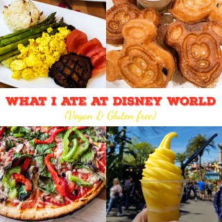 What I Ate at Disney World 2018 (Vegan & Gluten Free)