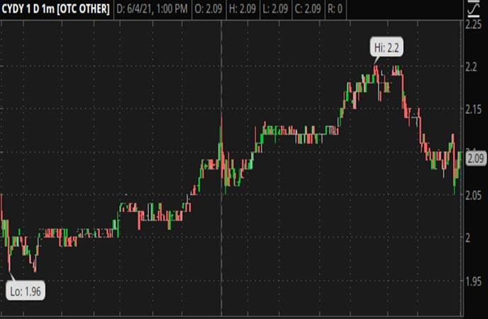 Penny_Stocks_to_Watch_CytoDyn_Inc._(CYDY_Stock_Chart)