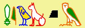 ミウケム猫