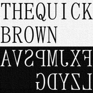 thequickbrown