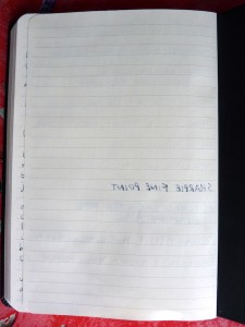Rhodia Webnotebook ink tests back