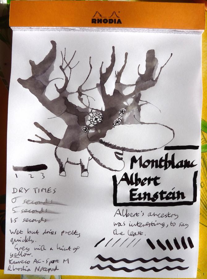 Montblanc Albert Einstein Inkling doodle
