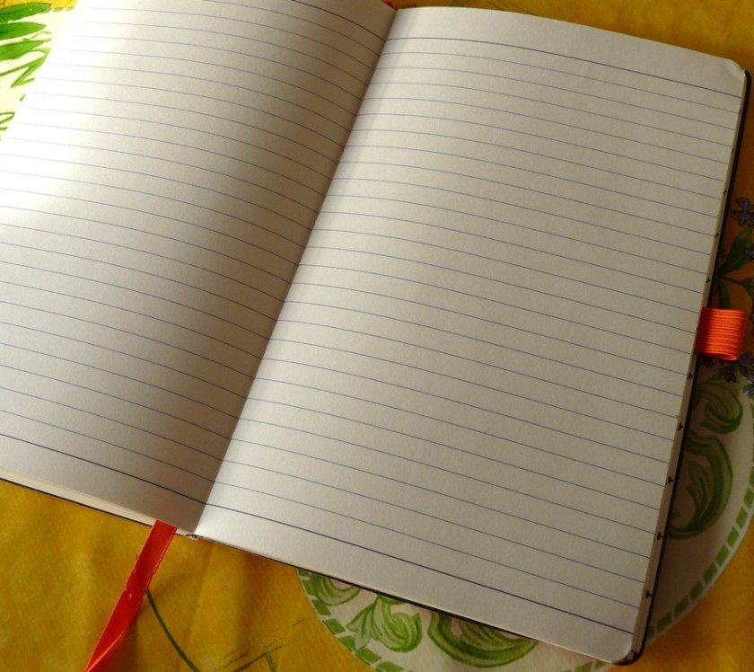 Papernotes notebook inside pages