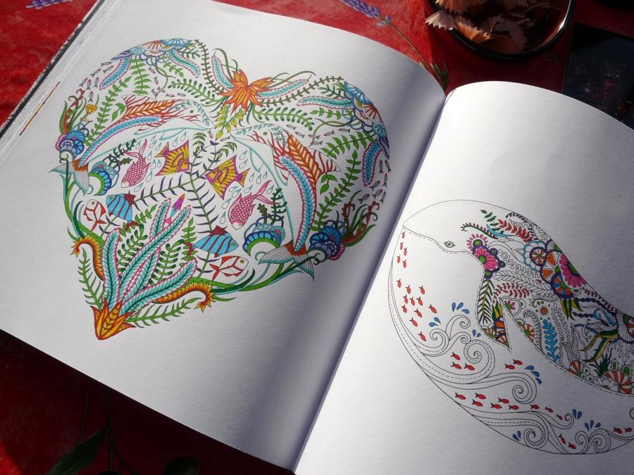Johanna Basford Lost Ocean Colouring Book Review – Pens! Paper! Pencils!