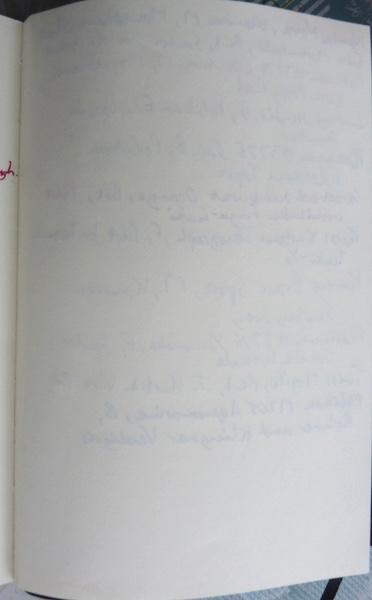 Viaggio Notebook ink test back