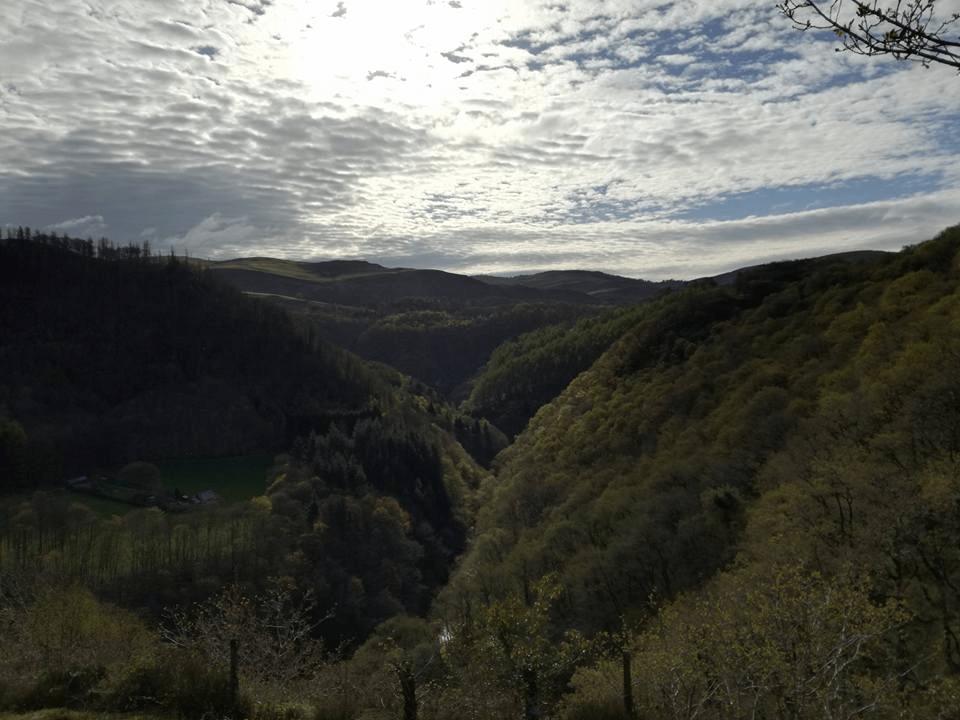 Rheidol Valley - HyB17