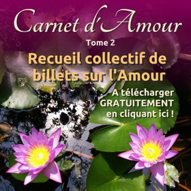 pave-carnet-amour2_redimensionner_redimensionner