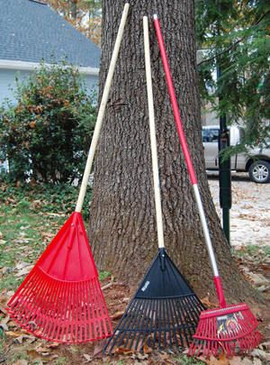 Red_and_black_rakes