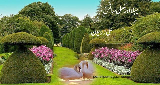 ali-zeryun-poetry-pehla-mukamal-saans