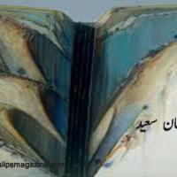 نظم ۔۔۔ سلمان سعید