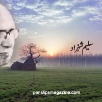 دو نظماں ۔۔۔ سلیم شہزاد