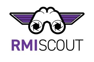 RMIScout - Wordlist And Bruteforce Strategies To Enumerate Java RMI Functions And Exploit RMI Parameter Unmarshalling Vulnerabilities