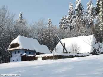 Aceasta poza a fost descarcata de pe site-ul www.sibiul.ro si este interzisa folosirea pozei fara acordul autorului.