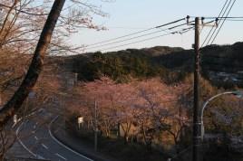 上総亀山 surroundings 14