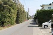 岩井 Streets 3