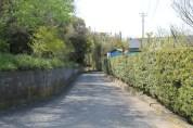 岩井 Streets 5