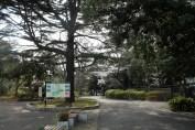 千葉公園 2
