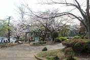 千葉公園 10