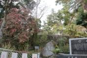 筑波山神社 7