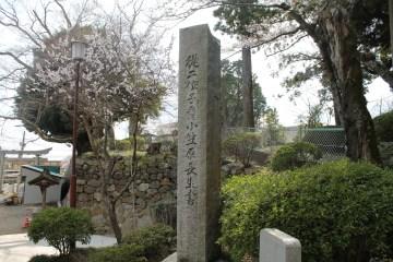 筑波山神社 9