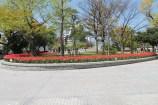 広島平和記念公園 12