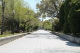 広島平和記念公園 15