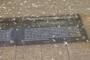 広島平和記念公園 32