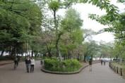 東京上野公園 35