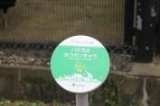 東京上野動物園 3