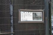 東京上野動物園 17