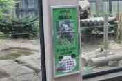 東京上野動物園 24