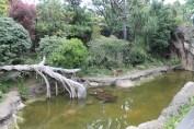 東京上野動物園 75