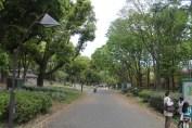 東京上野公園 61