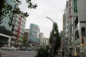 東京秋葉原 19