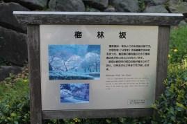 皇居東御苑 10