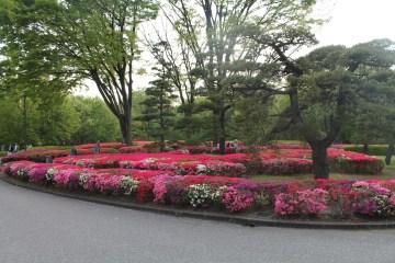 皇居東御苑 70