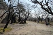 岩手公園 2