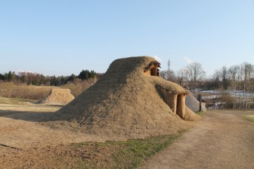 Reconstructed pitt dwellings